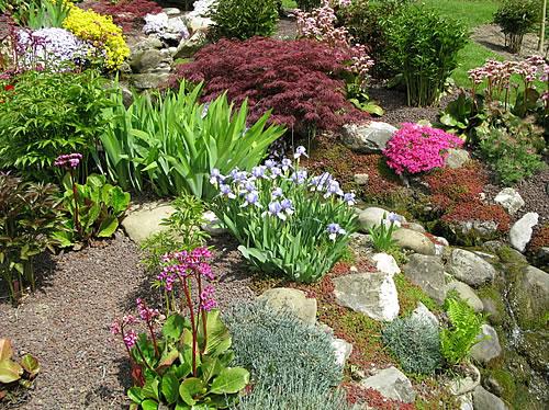 Ein Steingarten bietet sich besonders für Grundstücke in Hanglage an. Foto: istock.com / BasieB